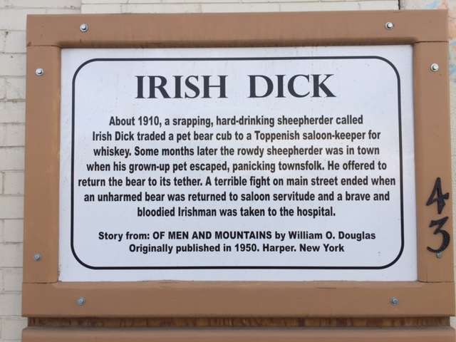 Story of Irish Dick