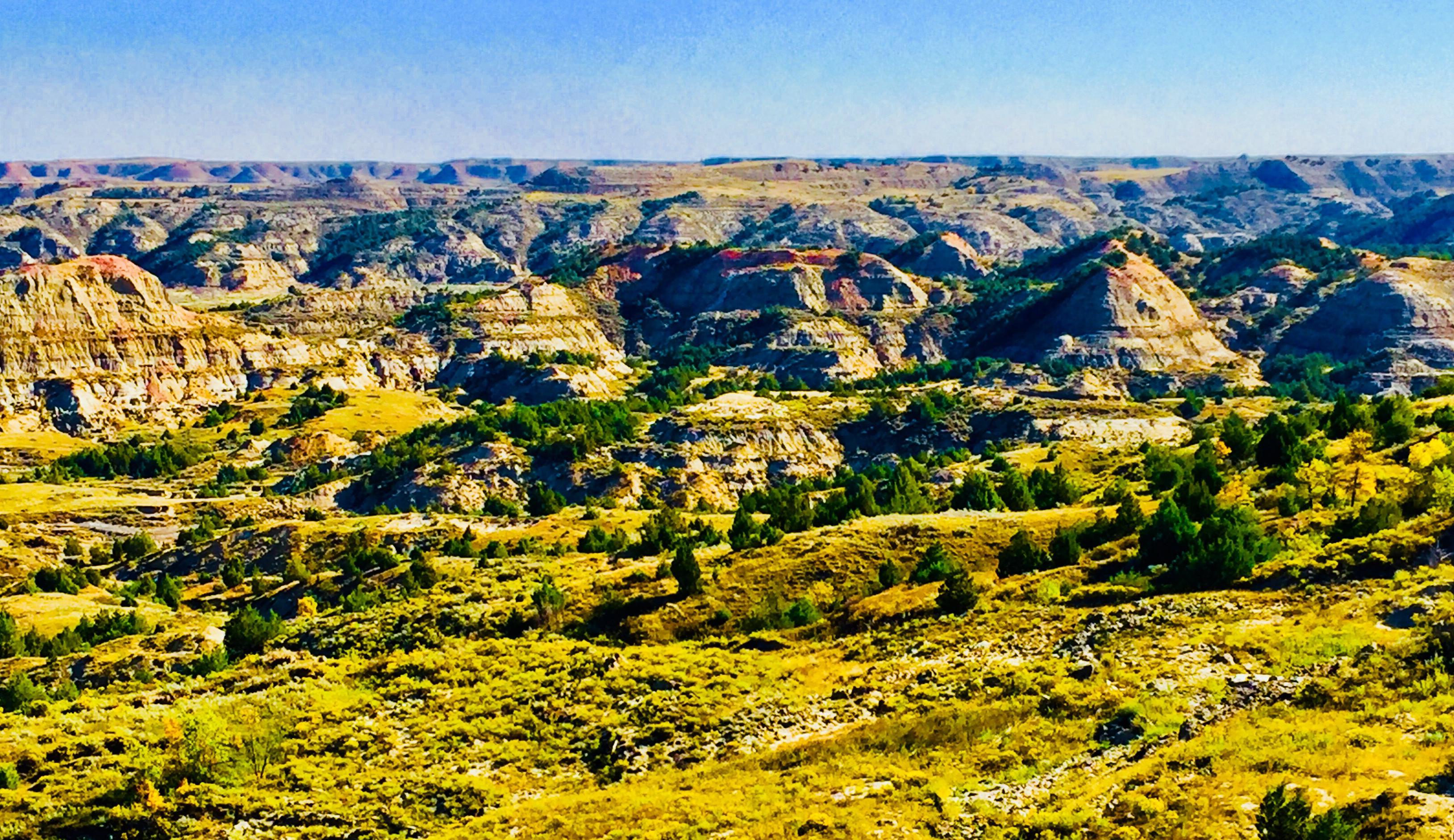tr-panorama.jpg
